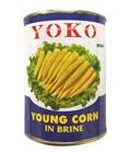 ヤングコーン水煮 YOKO(540g)